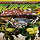 TMNT 3: Mutant Nightmare / Nintendo DS